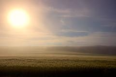 sunrise in the morning haze (Jules Marco) Tags: morning sky sun nature clouds sunrise canon outdoor horizon natur himmel wolken sunny sonnig sonne sonnenaufgang morgen horizont morninghaze morgendunst sigma1020mmf35exdchsm eos600d