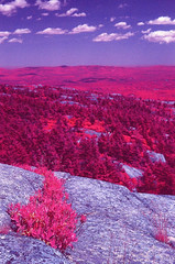 Granite State (Markus Jork) Tags: leica mountain film 50mm slide summicron granite infrared m3 monadnock fpp colorir aerochrome