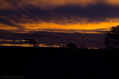 Sunset in Chapada dos Guimares (Albedi Junior) Tags: sunset brazil nature canon ngc cerrado matogrosso t3i chapadadosguimares natgeo
