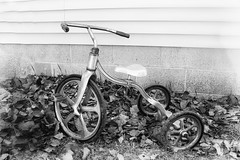 Junes assignment - BIKES (TAC.Photography) Tags: bike antique tricycle antiquetricycle