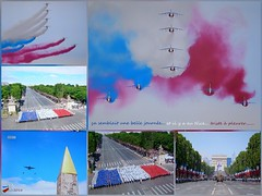 14 juillet 2016 (brigeham34) Tags: paris france arcdetriomphe tlvision dfil oblisque drapeaux bleublancrouge patrouilledefrance fz45 14juillet2016