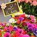 Cours Saleya_8