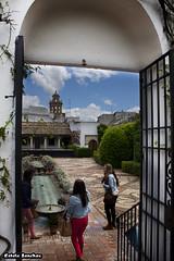Palacio de los marqueses de Viana (Crdoba) (EstelaSanchezR) Tags: de los crdoba viana palacio patios marqueses