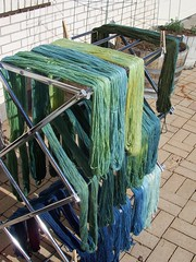 Green and Blue (ShearedBliss) Tags: blue green handmade indigo yarn dye dyeing handdyed naturaldye
