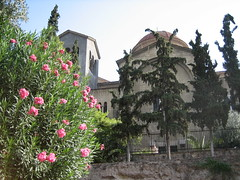 044 - Flowers & Church (Scott Shetrone) Tags: flowers plants other graveyards events churches places athens greece 5th kerameikos anniversaries