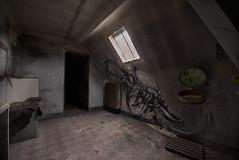 Sanatorium Art (UE Critical Mass) Tags: urban france art abandoned graffiti woods nikon urbanexploration criticalmass sanatorium derelict ue d800 urbex exploratio sanatoriumdelaforet