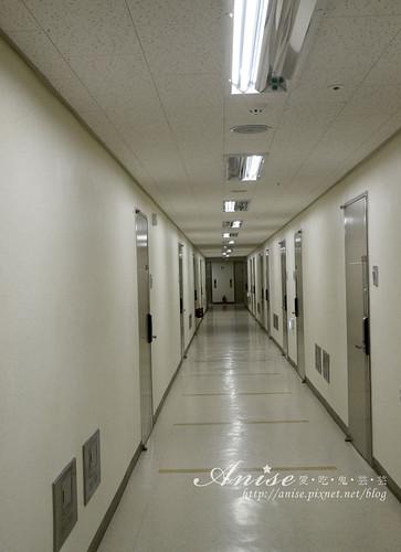 金色森林公寓酒店014.jpg