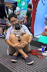 Little Emperor (kwang56) Tags: dog chihuahua cute bird goldenretriever puppy expo snake shihtzu pug parrot chow cockatoo dogshow macaw