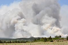 Black Forest Fire (sierachris) Tags: fire colorado blackforest pinecreek blackforestfire