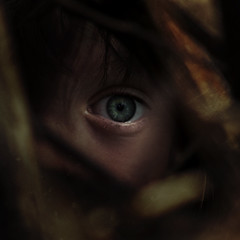 Don't Panic (Krista Pegg) Tags: eye trapped fear hidden panic hiding