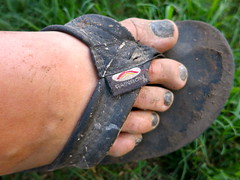 IMG_8813 (David Danzig) Tags: music feet festival manchester shoes tennessee dirty flip bonnaroo flop 2013