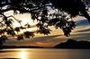 apenas uma REPRESA... dá prá acreditar??! bfds (Ruby Ferreira ®) Tags: trees sunset dam pôrdosol árvores notreatment silhuetassilhouettes represabillingssp brasilemimagens galhosbranches