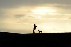 Silhouette (Laura Grimsley Photographer) Tags: sunset shadow dog sun black beach silhouette set sunrise kent nikon labrador shadows path hill silhouettes short beaches tall rise visual ashford ways slant dover folkestone d3100 lauragrimsley