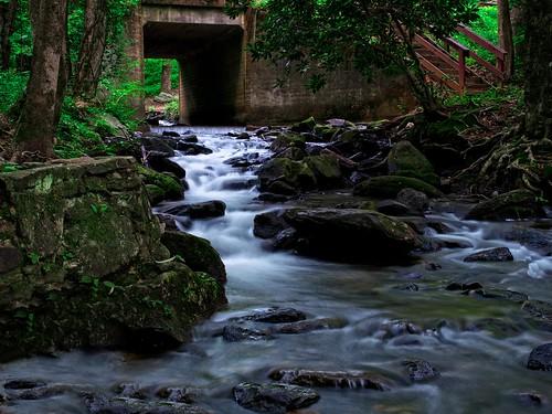 Amicalola Falls-Dawsonville, GA  #flickr12days