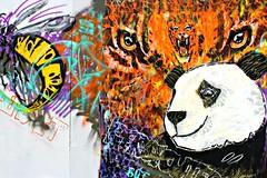 I'm Not Dead Yet, Upfest (8333696) Tags: bear street urban streetart green art st yellow wall bristol dead tin zoo graffiti stencil mural paint panda artist im tiger can spray painter spraypaint graff yet aerosol pandabear nort upfest 2013 imnotdeadyet