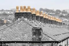 DSC_0089 - Terrace tops and chimney pots... (SWJuk) Tags: uk england home closeup canal nikon lancashire roofs towpath 80200 burnley slates leedsliverpoolcanal chimneypots d90 terracedhouses nikond90 swjuk mygearandme
