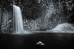 Icicle AmphiTheater (redspub) Tags: longexposure winter blackandwhite snow ice oregon waterfall pacificnorthwest icicles marioncounty canon2470mm mountangelabbey abiquafalls ryanpainterphotography vision:outdoor=0857 vision:sky=0664