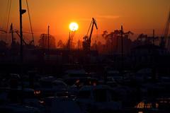 puerto (Luis Diaz Devesa) Tags: ocean cruise blue sunset sea sky espaa water port boat mar spain rojo agua europa barco ship barcos harbour galicia galiza pontevedra vilagarciadearousa villagarciadearosa luisdiazdevesa