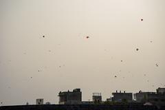 Kite Festival (14/365) (O_Orava) Tags: india kite festival sony alpha jaipur sonya7 sel2870 sonye2870mmf3556