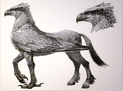 the world s newest photos of hippogriff   flickr hive mind