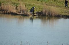 sous le signe du soleil 035 (Jean-marc17340) Tags: bird water birds landscape waterbird vol inondation littoral loisir charentemaritime chatelaillonplage borddemer intempries souslesignedusoleil