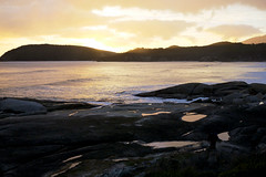 WilsonsProm_18 (djtbay) Tags: river tidal wilsons promontory