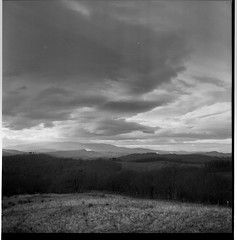 landscape by nicnikf - seems that i cannot obtain a decent photo of this landscape (Pian di Feccia, Chiusdino, Siena). Who believes that landscape photography is a easy, i think that they are wrong.  This was with the Rolleiflex T (3.5f tessar) on FP4+ developed with ilfosol 3. i definitely placed badly the zones , because i didn't had my spot meter with me so the trees are in zone II.