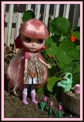 Pinkie Planting Flowers