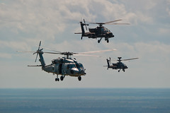 Navy and Army Joint Aviation Training (SC Guard) Tags: train apache unitedstates florida nationalguard jacksonville fla usnavy joint usarmy seahawk armynationalguard hh60h ah64d hs11 navalairstationjacksonville nasjacksonville southcarolinanationalguard scng antisurfacewarfare combatsearchandrescue scarng southcarolinaarmynationalguard helicopterantisubmarinesquadron11 151attackreconnaissancebattalion