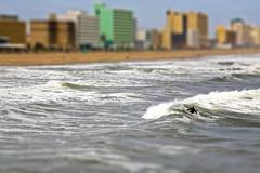 Plastic Beach (TW Collins) Tags: miniature surf surfer wave gorillaz tiltshif plasticbeach