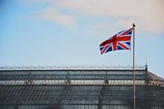 British Flag (lorenzoviolone) Tags: uk trip travel sky cloud building scotland reflex nikon raw wind fav50 glasgow flag british dslr peoplespalace glasgowgreen kodakportra800 appleaperture fav10 fav25 vsco d5200 afsdxvrzoomnikkor18105mmf3556ged nikond5200 vscofilm gla13