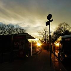 Evening Commute (KaDeWeGirl) Tags: newyorkcity sunset bronx busstop explore pelhamparkway bx12