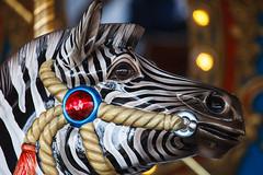 Carousel (mirsasha) Tags: sanantonio zoo texas carousel february 2015