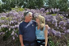 Love (greenelent) Tags: california ca people love garden couple valentine photoaday 365 valentinesday wysteria