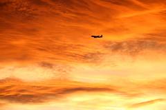 Landing on Mars... (Thomas Ranner) Tags: airbus austrian a320 viennaairport