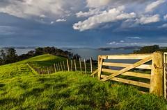 After the rain (loveexploring) Tags: newzealand cloud fence bay northisland dramaticsky rodney paddock kawauisland haurakigulf farmgate aucklandarea kawaubay scandrettregionalpark kiwigatelatch