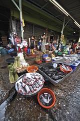 Flickr_Bangkok_Klong Toey Market-06-02-2015_IMG_5129 (Roberto Bombardieri) Tags: food asia bangkok tailandia mercato klong toey markey thail
