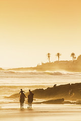Morocco-2016-4496 (Mariss Balodis) Tags: ocean sunset tree beach town village wave surfing palm camel morocco berber anchor taghazout
