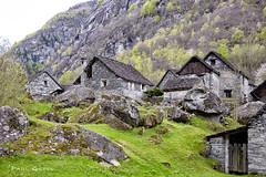 Stone houses at Sonlerto (PaulGsell) Tags: trees water forest river schweiz switzerland tessin ticino woods rocks wasser stones steine valley fluss wald bume tal felsen verzasca