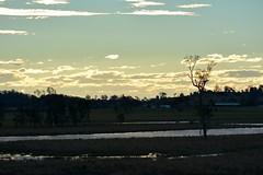 Seelim's Creek (dustaway) Tags: winter water reflections landscape flooding australia lagoon nsw wetlands australianlandscape ruralaustralia northernrivers richmondvalley seelimcreek seelemscreek australiancreeks seelimscreek
