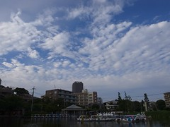 Big sky (Koh Takahashi) Tags: park sky cloud sunshine japan skyline outside tokyo outdoor 28mm gr ricoh grd grdiv