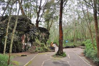 dieng plateau - java - indonesie 9