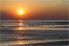Nordsee - 08051601 (Klaus Kehrls) Tags: meer wasser himmel nordsee niederlande zwin idylle abendstimmung cadzandbad