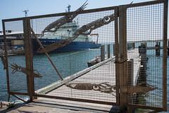 Squid Fence (votsek) Tags: ocean water fence us dock ship unitedstates massachusetts atlantic falmouth squids 2016