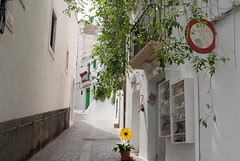 Street in Old Ibiza Town (Tim Cunningham's Images) Tags: spain ibiza balearics
