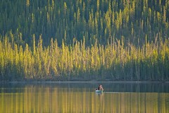 Evening Paddle - Tokina AT-X 100-300mm f4 MF Lens & Metabones N/F Adapter (MIKOFOX  Catching Up!) Tags: lake canada water forest spring may canoe yukon canoeing paddling spruce 3000mm xt1 fujifilmxt1 mikofox tokinaatx100300mmf4mflensmetabonesnfadapter