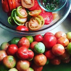 Oven-Roasting Tomatoes