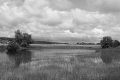 1149 (Explore) (William Sc) Tags: blackandwhite landscape clouds canon eos 500d sigma 1770mm
