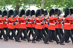 In Step (dhcomet) Tags: london army royal parade british guards scots themall ceremonial troopingthecolour pegeantry