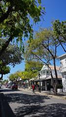Key West, FL (SomePhotosTakenByMe) Tags: city vacation usa holiday building tree america keys island unitedstates florida outdoor urlaub insel stadt keywest amerika baum gebäude floridakeys duvalstreet